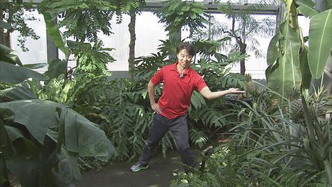 12月3日(土)から放送 第21回富山県中央植物園de体操してみた