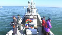 2017.12.23 富山を釣る「釣り船で太刀魚」