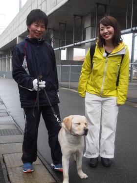 犬の訓練所
