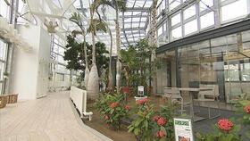 楽しい植物園