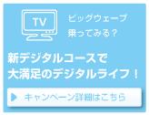 テレビサービスキャンペーン内容はこちら!