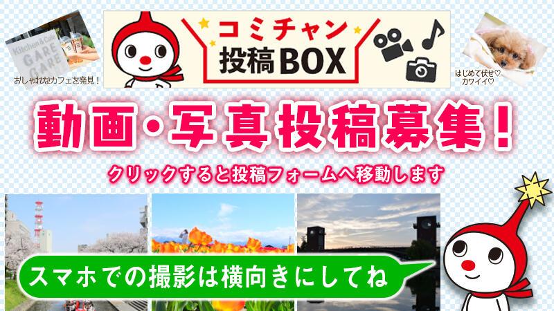 コミチャン投稿BOX